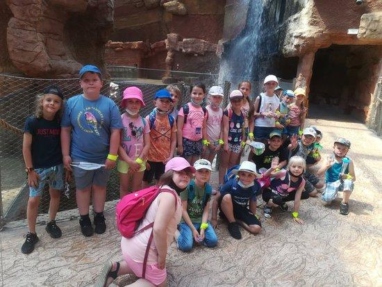 Galeria Wycieczka do zoo